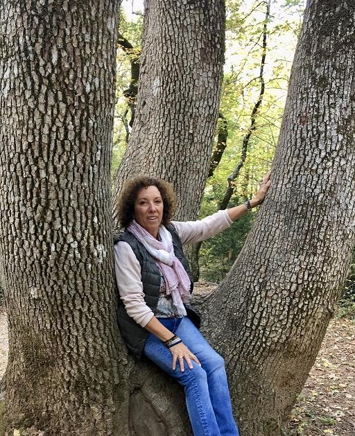 veronique-flayol-saint-baume-forest